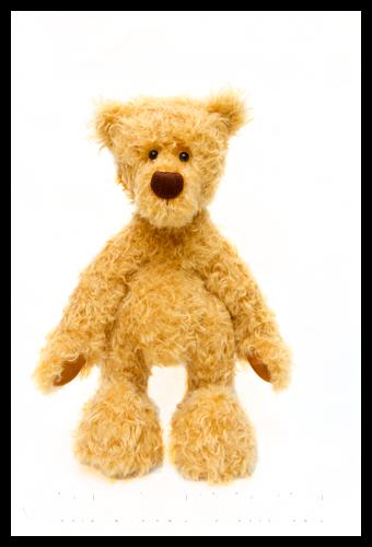 Jenelle's Bear